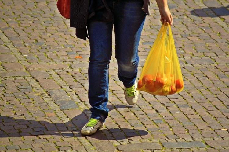 Person carrying vegetables in a bag