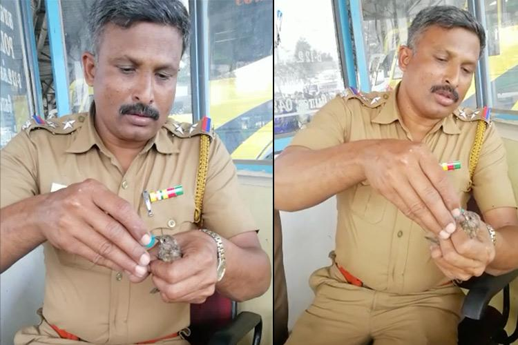 Watch Coimbatore cop rescues and feeds this parched sparrow