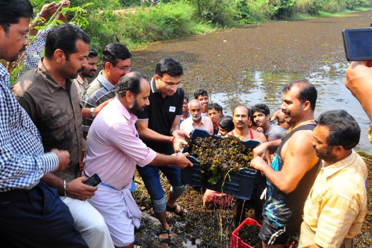 Lake cleaned Collector feeds volunteers 50 kg of Kozhikodes famous biryani