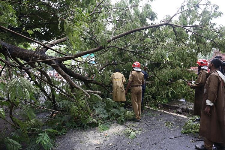 Heavy rains continue to lash Kerala six more die as toll rises