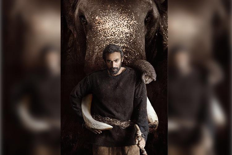 Rana to camp in the jungles of Kerala to film Haathi Mere Saathi