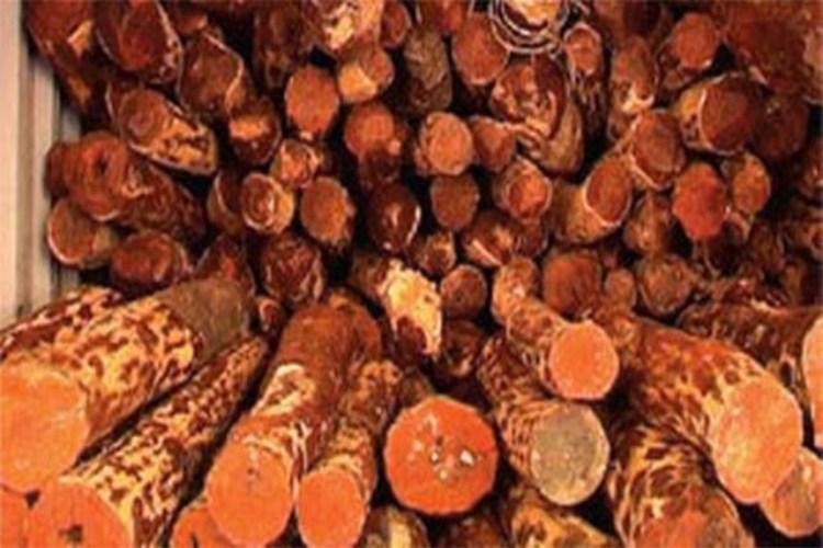 Andhra court sentences three red sanders smugglers to 11 years in jail