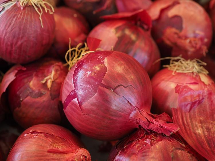 Delhi seeks Centres help to prevent onion-hoarding