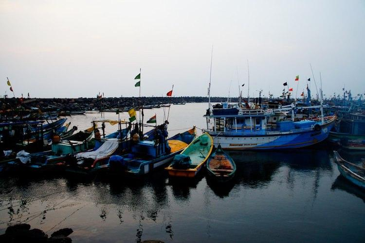 Tamil Nadu gets Rs 450 cr loan from Centre for building 3 fishing harbours