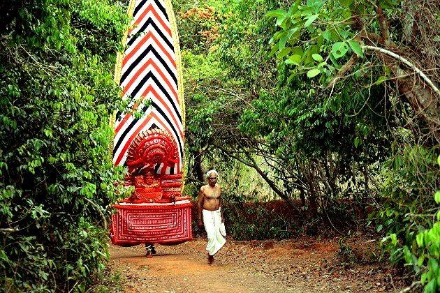 Sacred groves of Kerala Backed by divinity but not legality