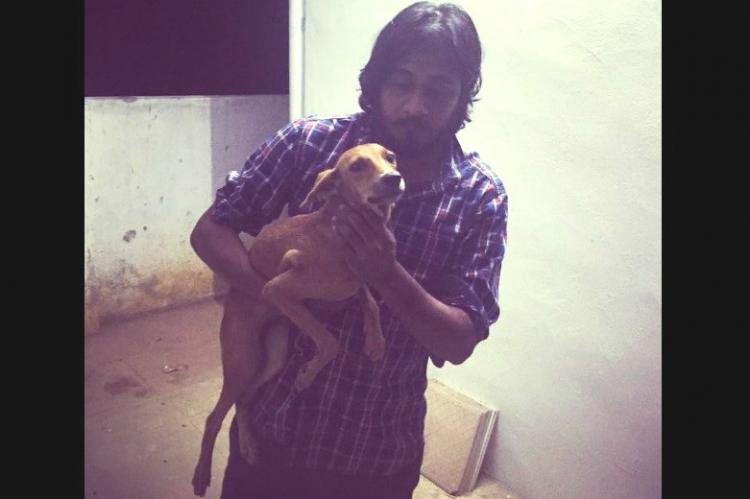 Miraculous escape Dog thrown from Chennai rooftop found alive