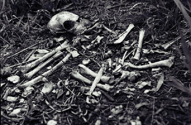 Human skeleton found abandoned inside barrel