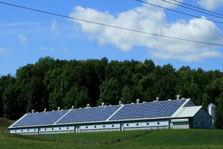 Clean energy Centre okays solar energy panels on 10000 houses in Tamil Nadu