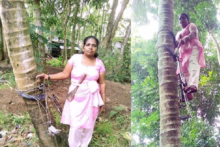 Keralas maram keri The non-conformist women who climb coconut trees for a living