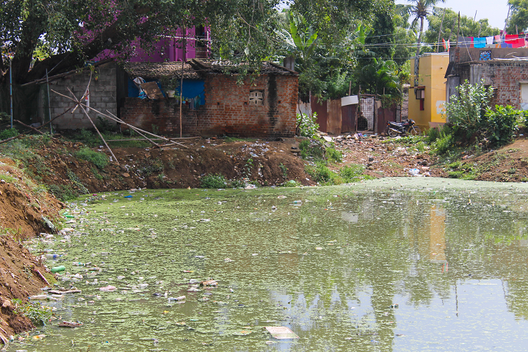 Jallikattu protests inspired this town to save their water source but their success was short-lived
