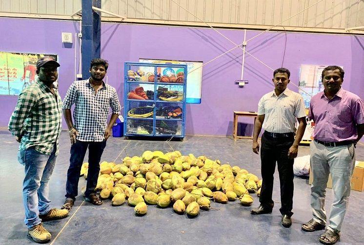 Tender thanks Delta farmers gift Cyclone Gaja volunteers truckload of fresh coconuts
