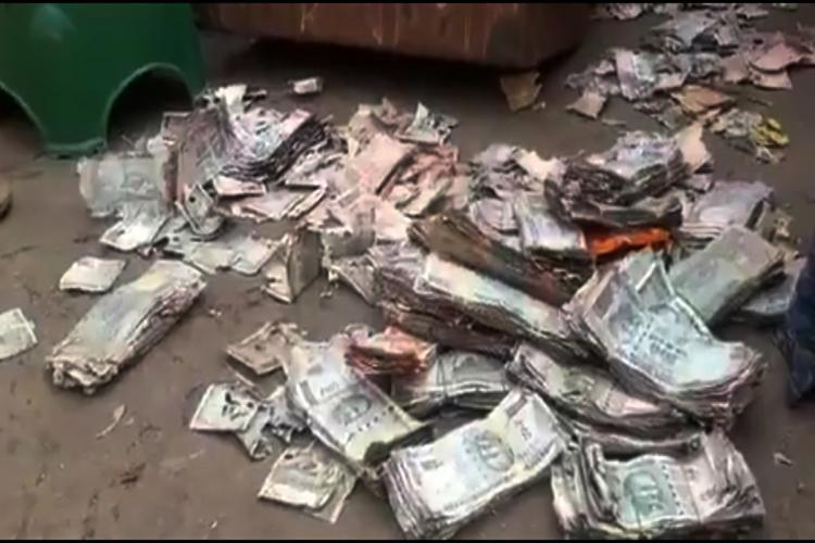 A portion of the currency notes of the Rs 5 lakh damaged by termites in Vijayawada