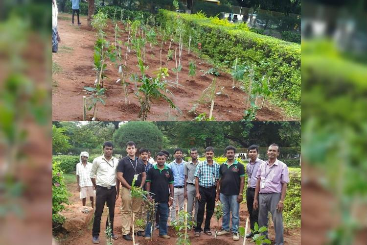 A startup for mini-forests 2 TN men are transforming educational and corporate campuses