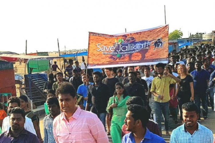 Huge youngsters rally in Chennai calls for Central legislation allowing Jallikattu