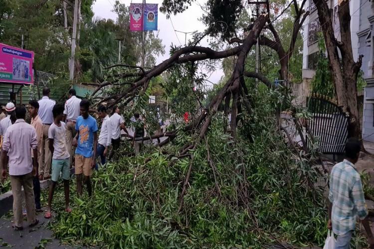 Heavy rains in Telangana Six die Rs 100 crore worth crop loss estimated