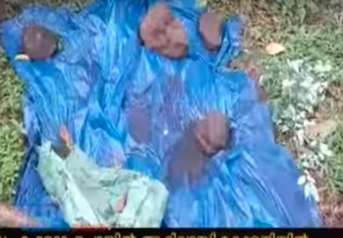 Malappuram tribal woman kills and buries newborn fearing community backlash