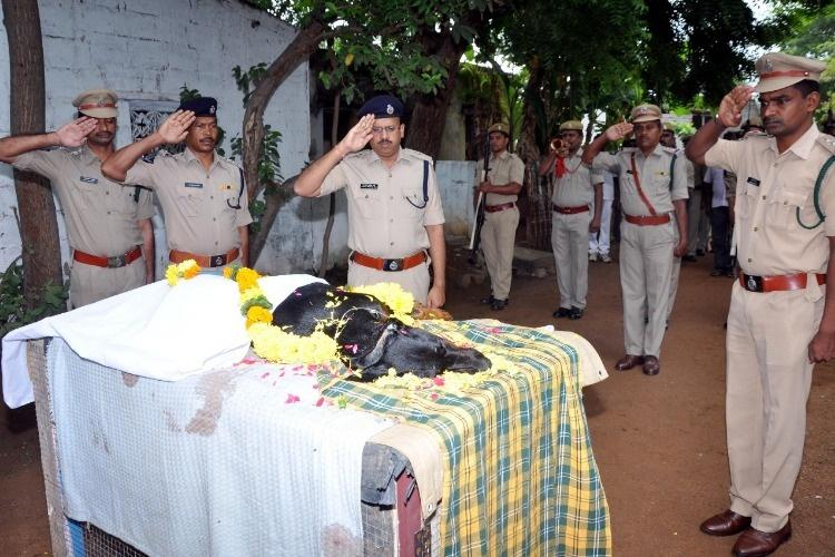 Varsha the star canine which cracked 136 cases for Andhra police dies