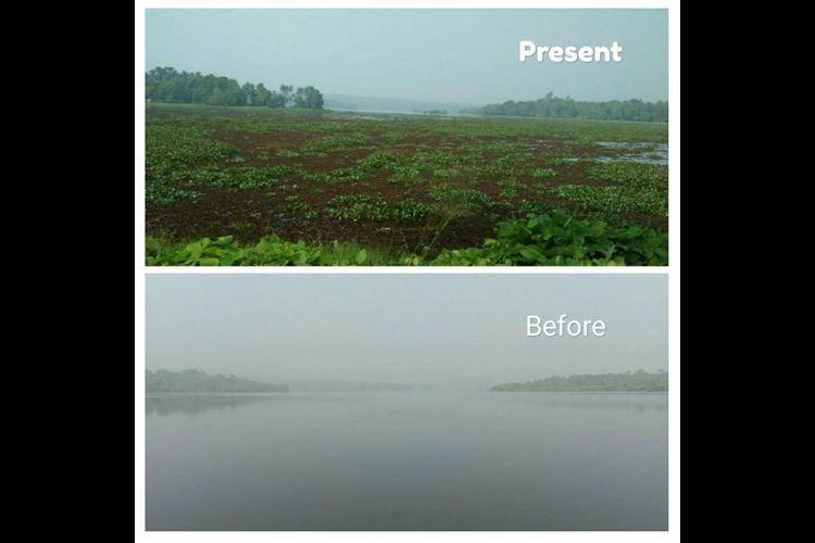 As Keralas Vellayani Lake dies a slow death residents urge govt to take action