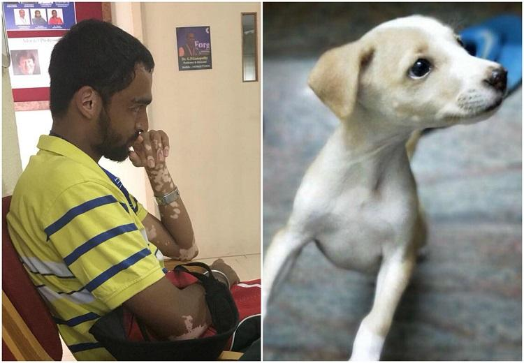 Engg student who allegedly killed puppy in Vellore arrested granted bail