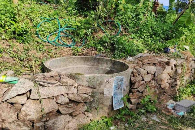 A well in Kerala as part of a stone fence in a rural area