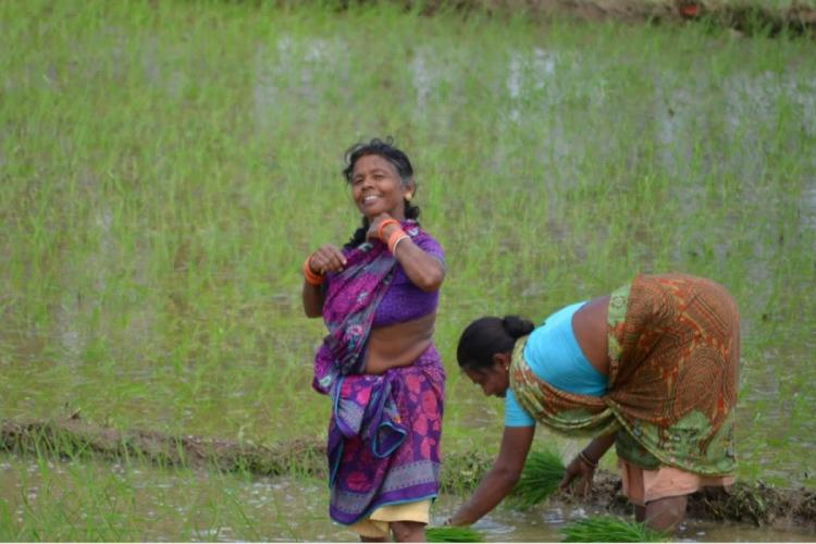 Two women farmers can be seen working in a paddy field One woman in a brown saree is bending forward and sowing something on the ground while the other in a purple saree is looking at the camera smiling