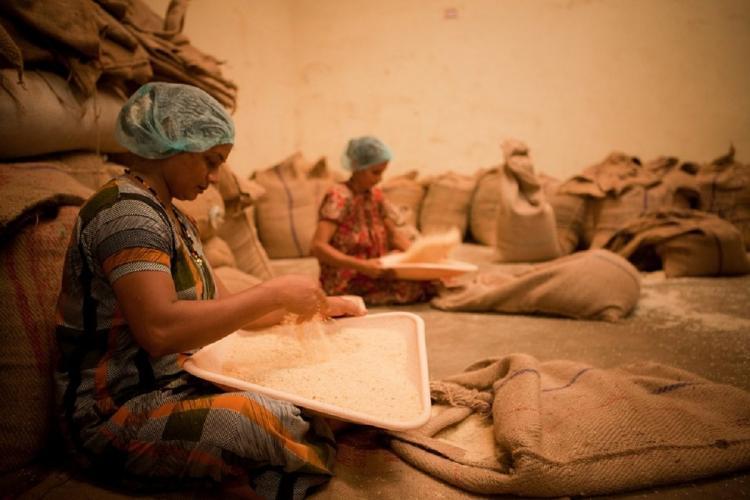 Representational image of women working