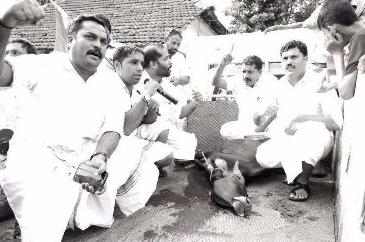 Kerala Youth Congress slaughters cattle in public as protest BJP livid