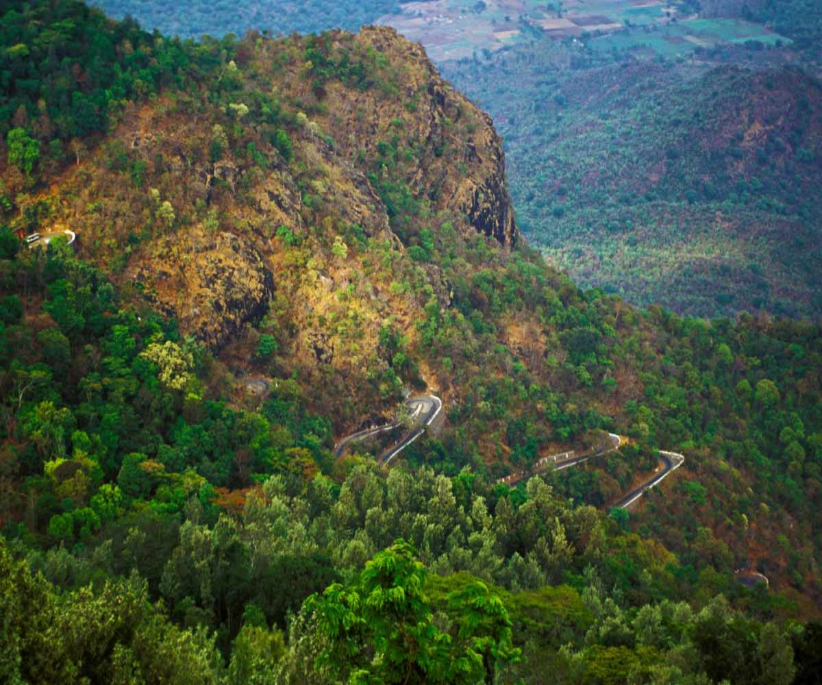 From trekking trails to scenic views, visit Yercaud to be close to nature