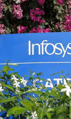 A board of Infosys in white against a blue background in the middle of flowers and plants