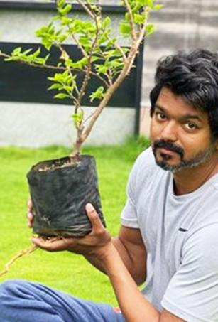 Vijay responds to Mahesh Babu's Green India Challenge, plants sapling