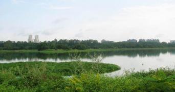 Hebbal Lake in Bengaluru