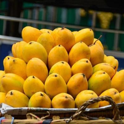 Banned chemicals still used for artificial ripening of fruits in Telangana