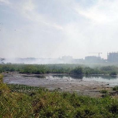 Bengaluru's Bellandur Lake catches fire yet again