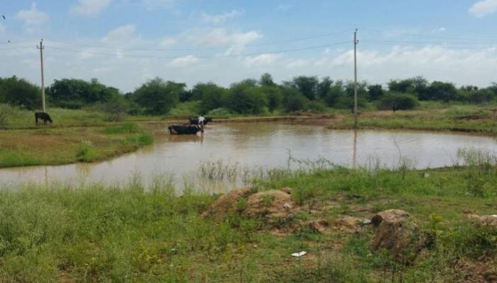 Ktaka govt to file review petition to reduce buffer zone for lakes NGO opposes