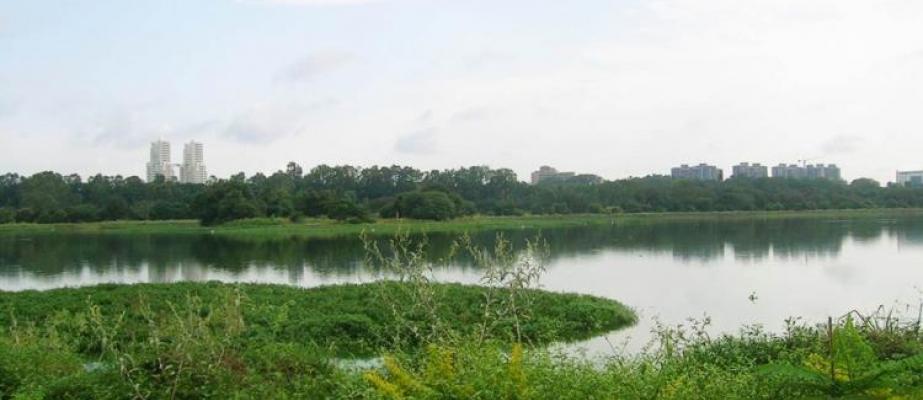 Bengaluru allocated Rs 3500 crore for lake rejuvenation, drainage systems